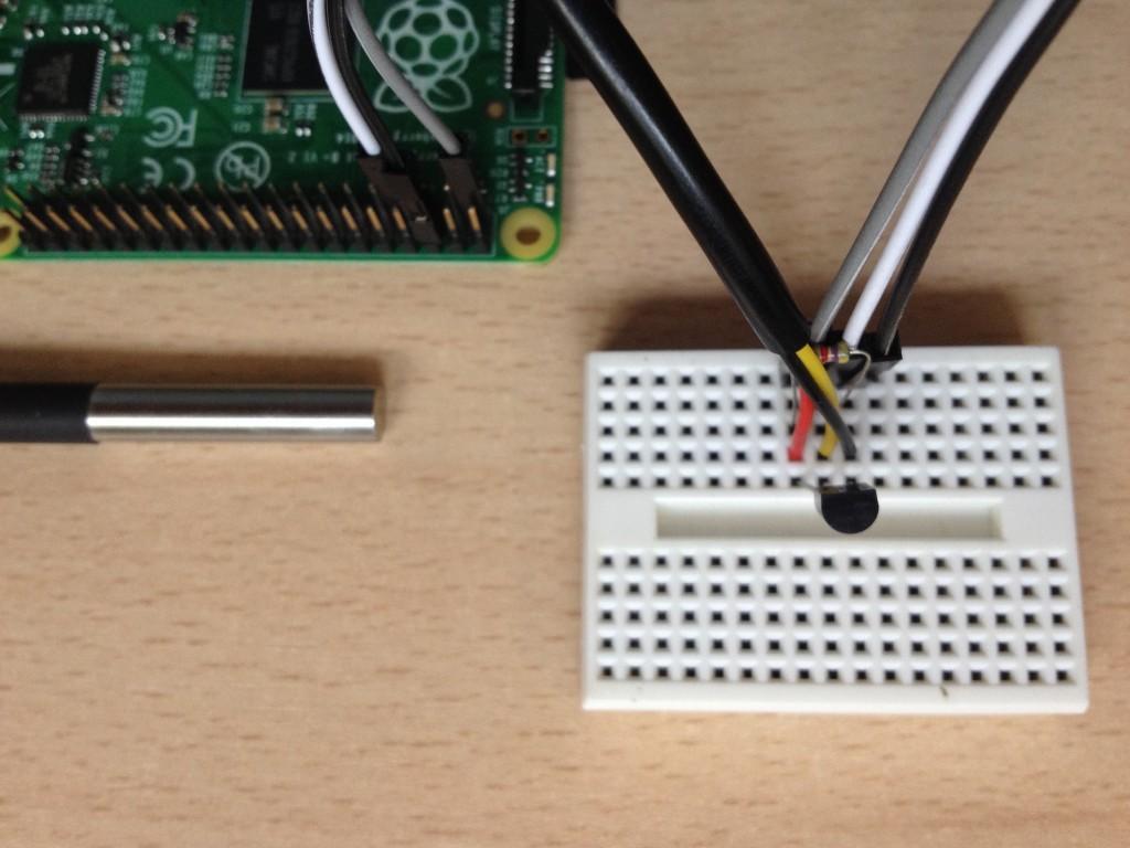 Dos sensores DS18B20 conectados a la Raspberry Pi